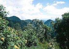 10 Places In Ecuador You Must Visit