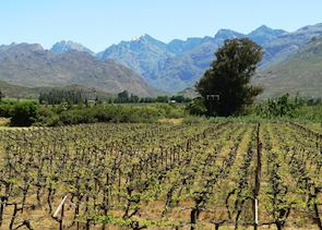 The Winelands, South Africa