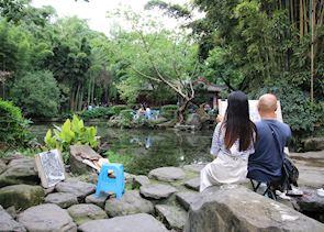 Visit Wangjiang Bamboo Park, Chengdu