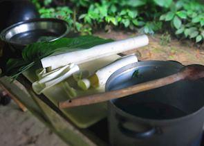 Minga Lodge - cooking class