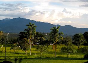 Countryside at Finca Bambusa, Colombia