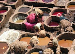 Local men working at the Tannery in Fez