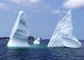 Icebergs at Twillingate