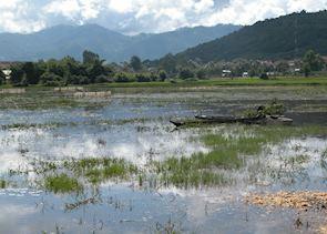 View of Lak Lake