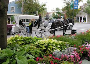 Horse-drawn carriage rides in Niagara on the Lake
