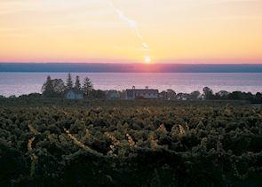 On the Seneca wine trail, Finger Lakes