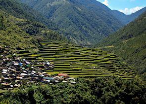 Rice terraces around Banaue