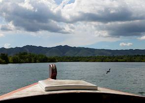 Scenery on the Abatan River, Bohol