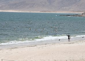 Fishing, Mirbat