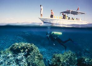 Diving in Aqaba, Jordan