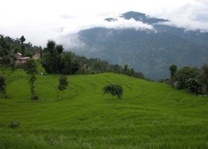 Countryside around Kalimpong