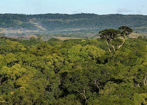 Ankarana Special Reserve