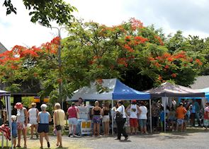 A local market on Rarotonga