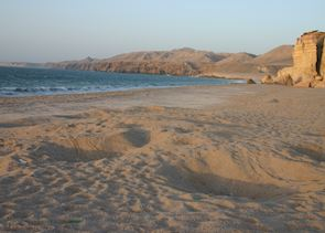 Ras Al Jinz Beach, Oman