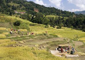 Village life, Kathmandu Valley, Nepal