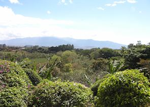 View from Finca Rosa Blanca