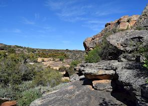 Bushmans Kloof Nature Reserve