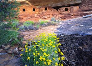 Ancestral Puebloan Ruins on the Utah/Colorado border