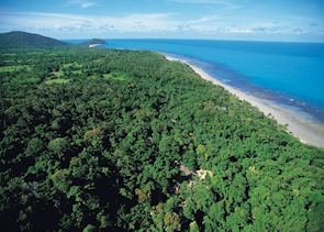 Daintree & Cape Tribulation, Queensland