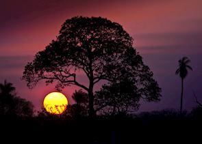 Refugio Ecologico Caiman, North Pantanal