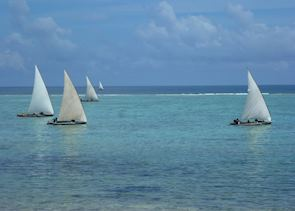 Dhows sailing off Zanzibar