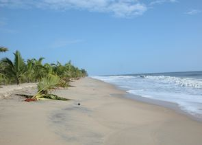 Marari Beach Resort, Marari Beach
