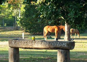 Pousada Rio Mutum, the Pantanal