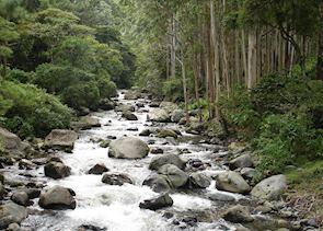 Chagras river, Boquete