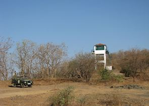 Watch tower at Gir