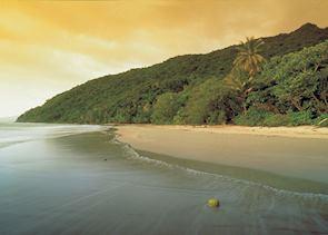 Daintree & Cape Tribulation, Tropical North Queensland