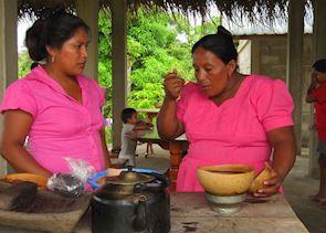 Cacao Plantation Tour, Punta Gorda