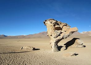 The tree stone, Bolivian altiplano