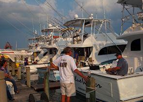 Fishing boats near Wilmington