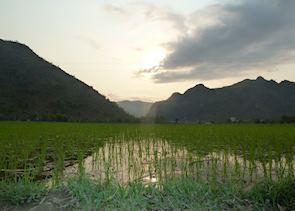 Valley view from rice paddy