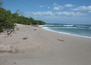 Playa Langosta near Tamarindo