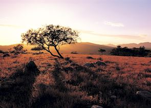 Wilpena Pound Sunset, Flinders Ranges, South Australia