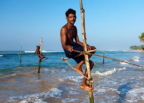 Stilt fishermen just outside Galle
