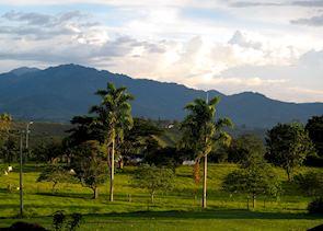 Countryside at Finca Bambusa, Colombia