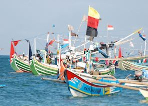 Fishing fleet near Medewi, Indonesia