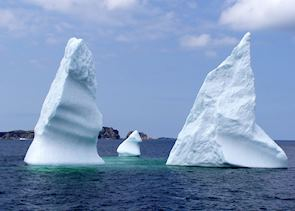 Icebergs at Twillingate
