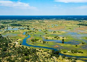 Beautiful floodplains that make up the Okavango Delta