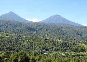 Scenery around Munduk