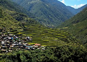 Rice terraces around Banaue