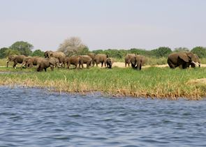 Lower Zambezi National Park, Zambia