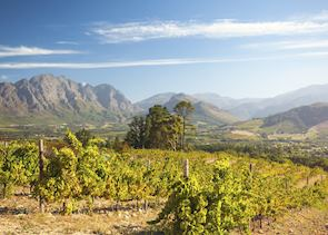 Franschhoek,. the Cape winelands