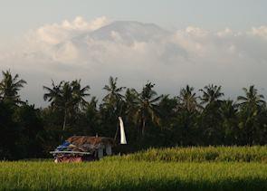 Volcano view, Ubud, Indonesia