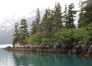 The coastline near Valdez
