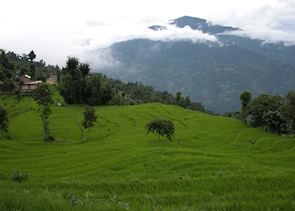 Countryside around Kalimpong
