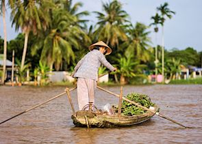 Taking goods to market in the Mekong Delta.