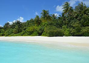 Beach, Maldive Island